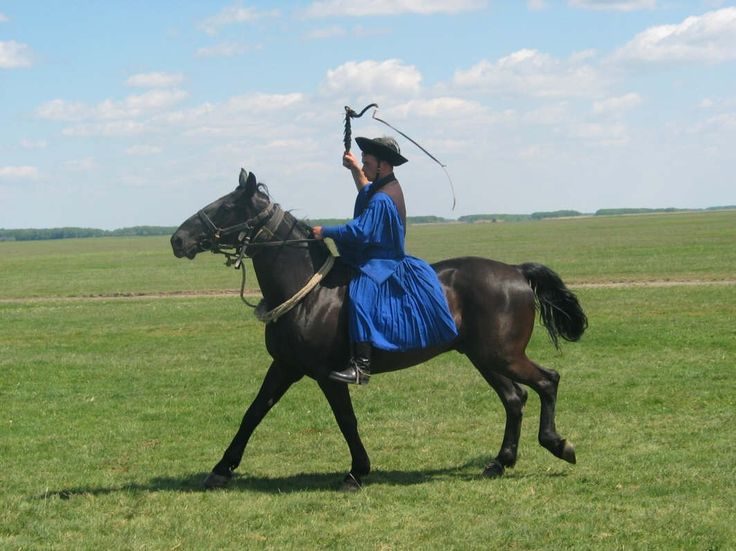 Horseman on the Hungarian Plains. Get free teaching aids and homework resources for The Good Master by Kate Seredy at www.LitWitsWorkshops.com/free-resources/ ... We also offer hands-on, sensory enrichment guides!