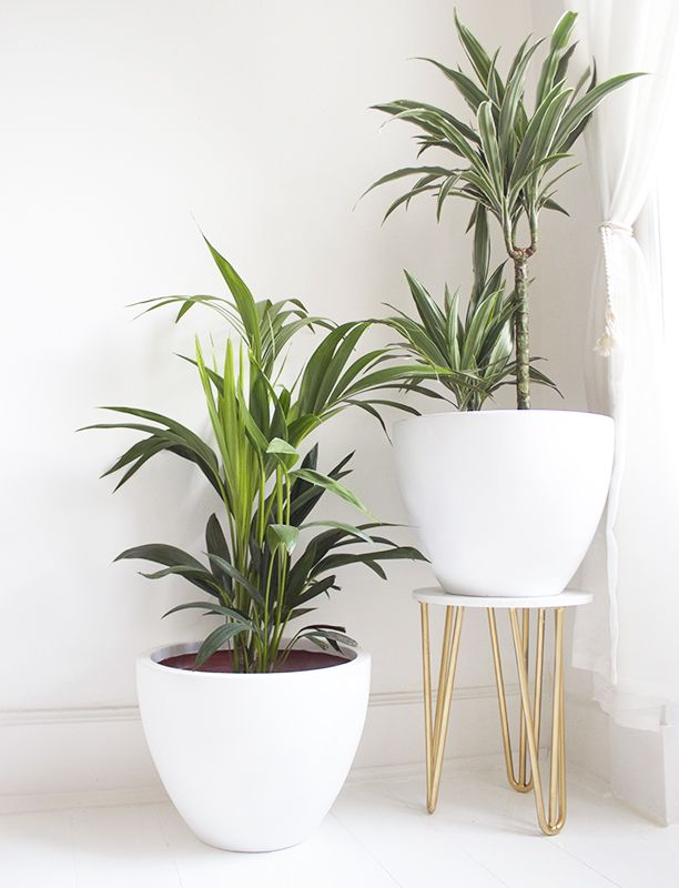 17 Best ideas about Diy Plant Stand on Pinterest