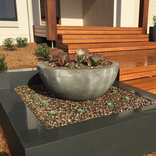 I know I should wait until the plants have grown more, but it looks so fresh, I couldn't resist. #begavalley #gardendesign  #succulents #farsouthcoast #nsw