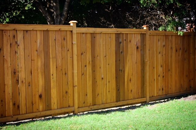 Forest Hill Wood Fence with Honey Teak Stain| Fence-All