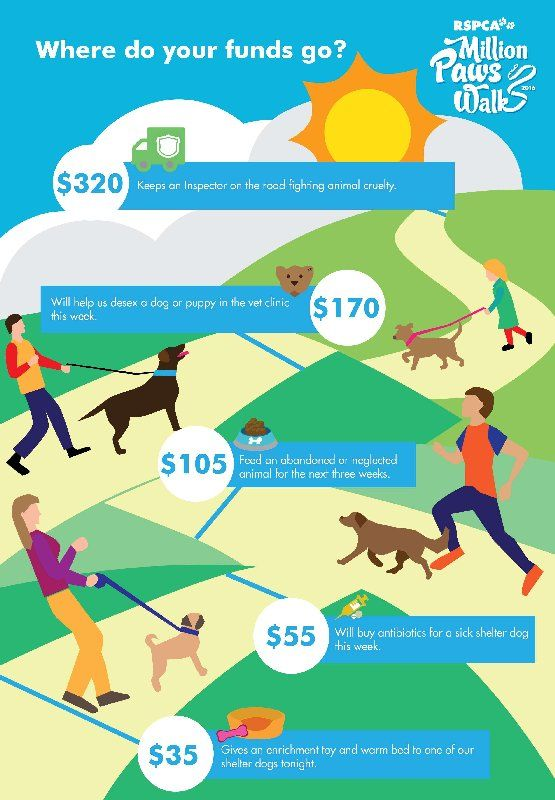 Fundraising is a vital part to our upcoming RSPCA Million Paws Walk on Sunday 15 May. Find out how your donation helps animals in our care....  Set up your own online fundraising page or donate to a friend to show your support. Find out more: www.millionpawswalk.com.au
