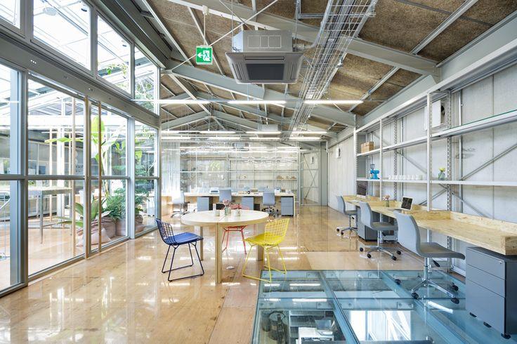 Blue Bottle Coffee Kiyosumi-Shirakawa Roastery & Cafe (Tokyo Japan) by Jo Nagasaka, Schemata Architects