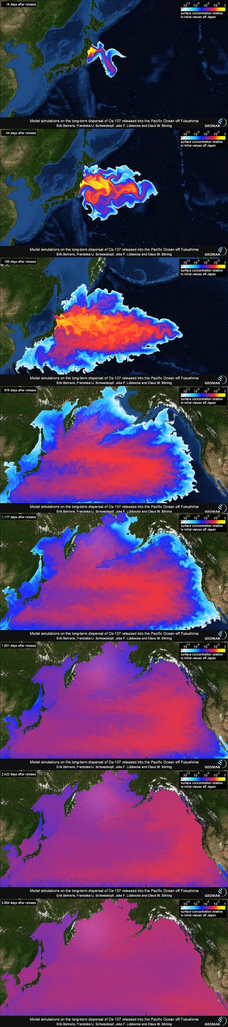 Fukushima radiation. This is very important it will and is already having an impact on the U.S. This is going to destroy us all and no one cares!!!