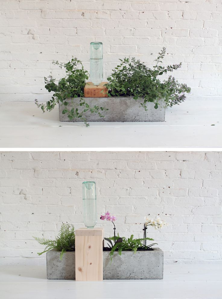 Make an automatic irrigation system with an empty wine bottle, concrete and some scrap wood. Check out the website for the full instructions and material list! http://www.homemade-modern.com/ep49-self-watering-concrete-planter/