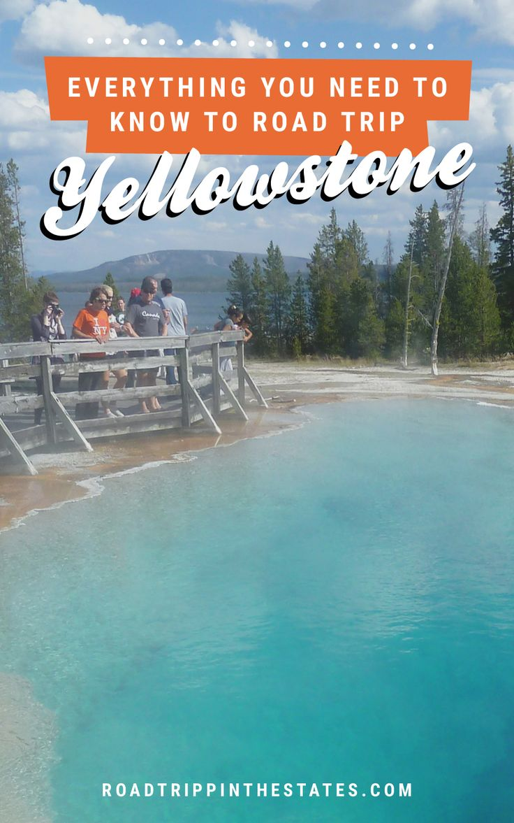 Everything you need to know to road trip Yellowstone! Find the full national park guide on Road Trippin' The States.