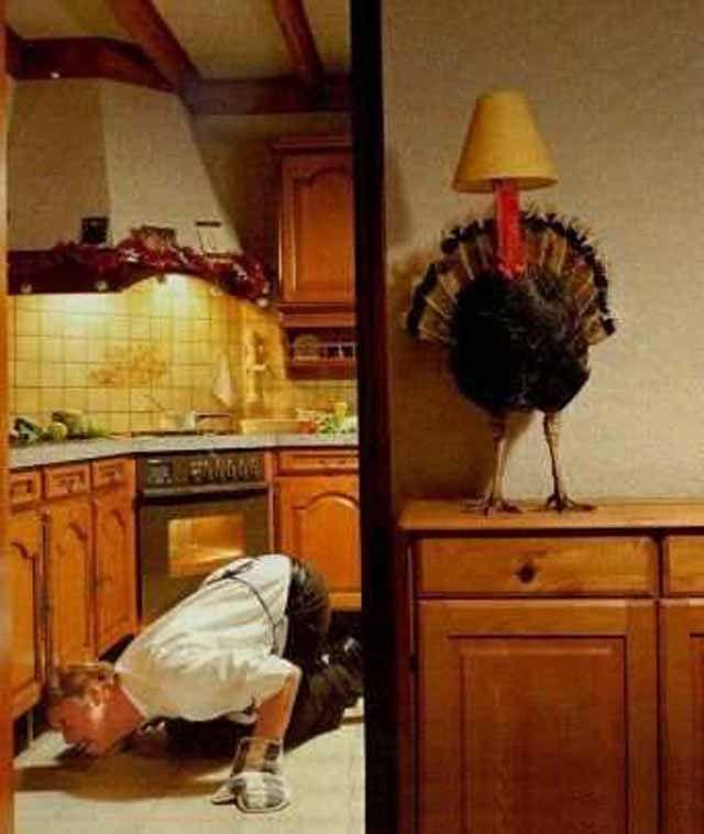 hide and seek turkey