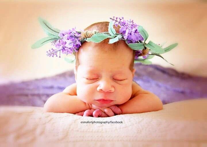 Lady lavender 😍