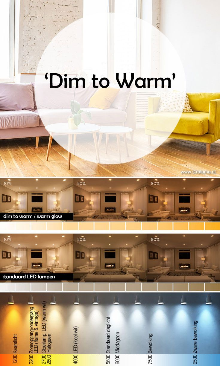 Dim To Warm Lampen Gloeilampen En Led Lamp