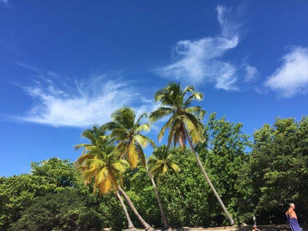 Come ti organizzo una crociera ai Caraibi!