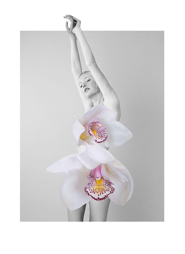 floral-mixed-media-collages-by-ernesto-artillo-8