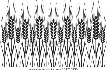 Field Of Wheat, Barley Or Rye Vector Visual Graphic Repeat Pattern ...