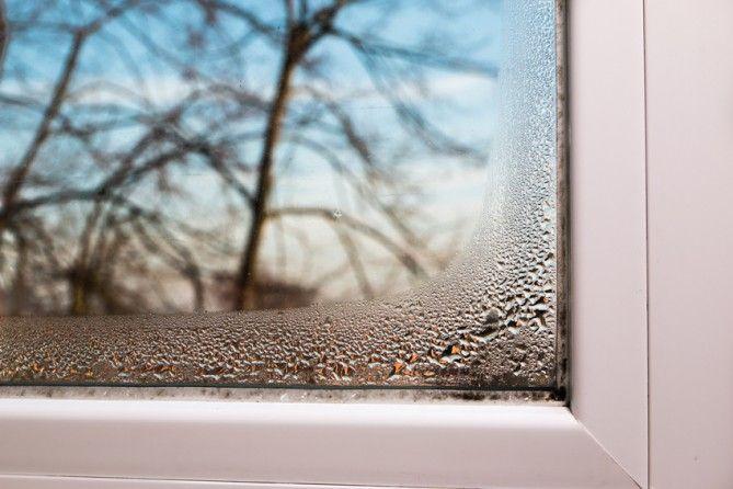 ¿Cómo lidiar con la humedad dentro de la casa? en 2020 ...