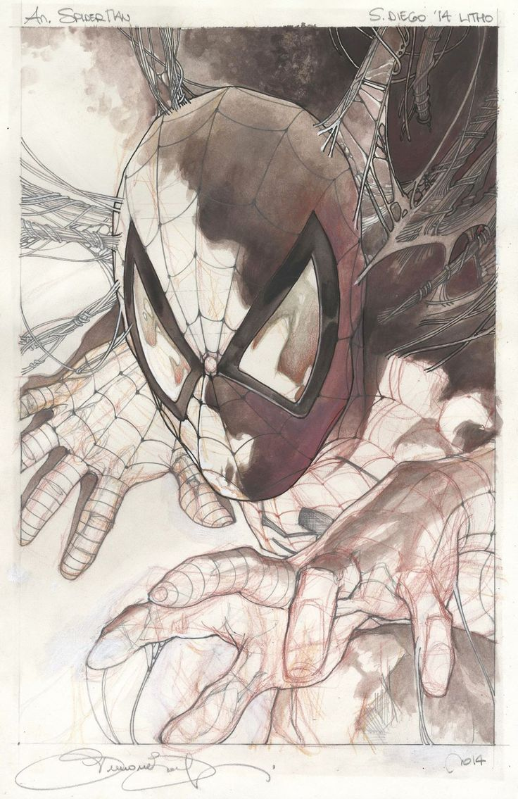 Astonishing Spider-Man by Simone Bianchi *