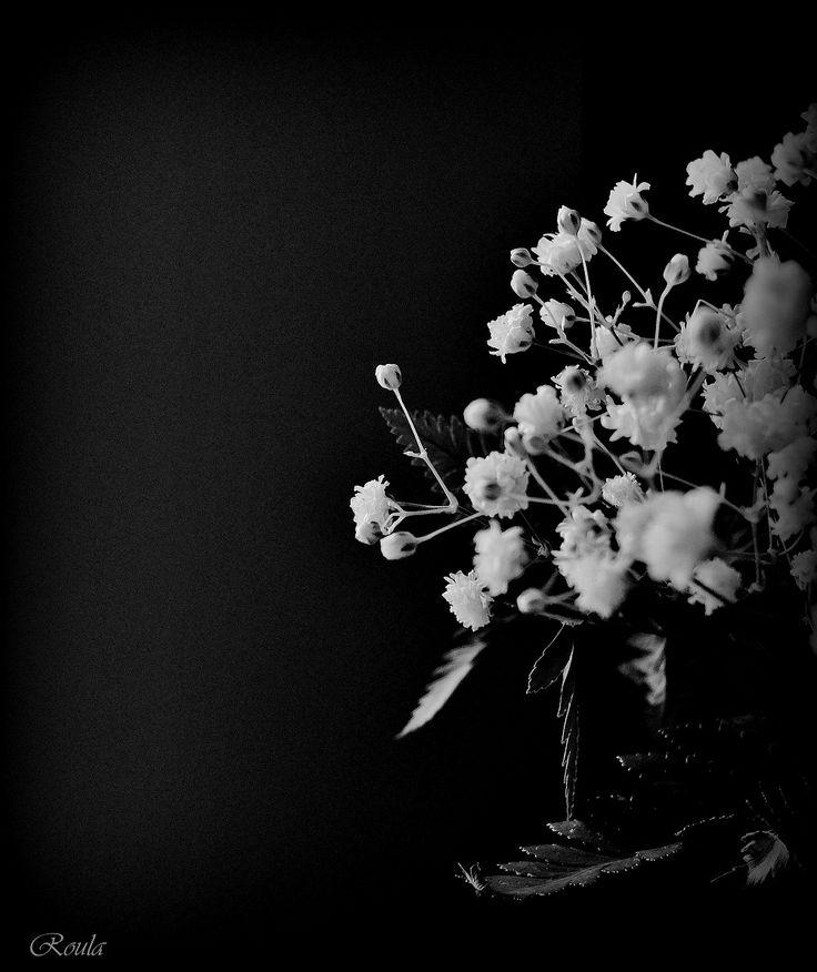 little white flowers...