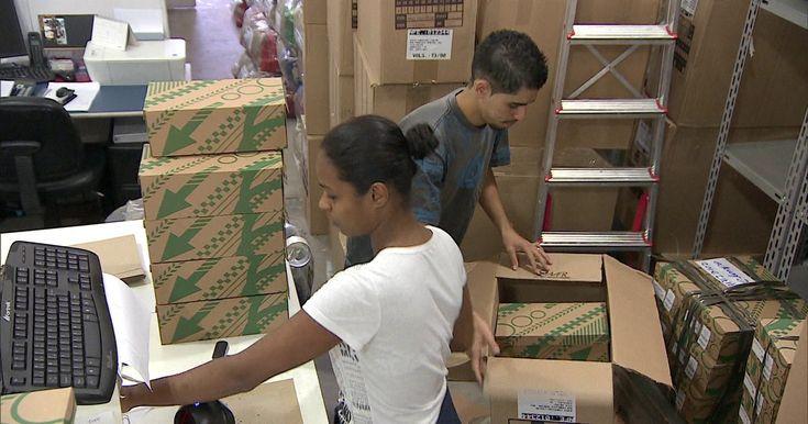 Novo regime de trabalho terceirizado pode afetar pequenas empresas