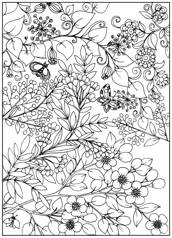 Coloring book for adult and older children. Coloring page ...