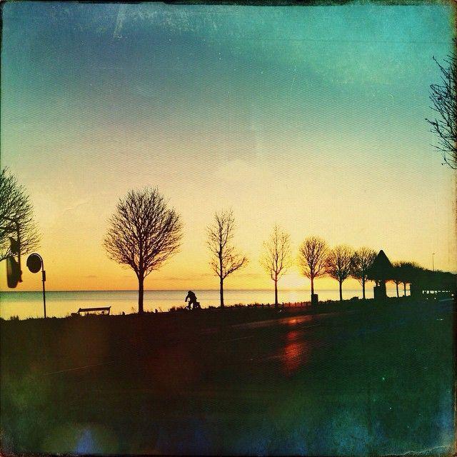 """@sdorphjensen's photo: """"Gorgeous morning to you"""""""