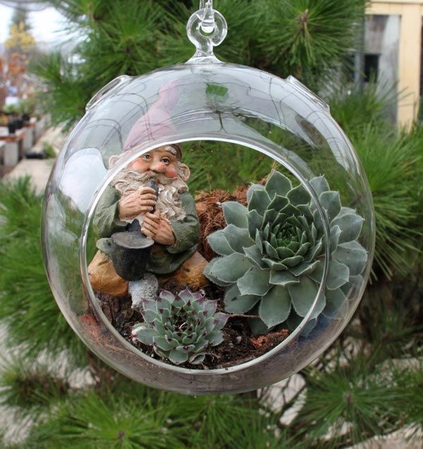 Succulents In A Glass Bowl DIY With Hens And Chicks From