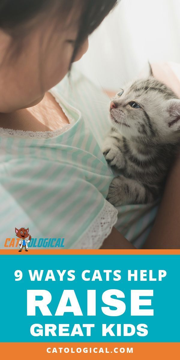 9 Ways Pets Help Raise Good Healthy Kids Infographic Cat Parenting Pets Cat Help