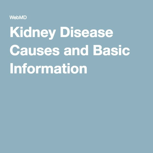 Kidney Disease Causes and Basic Information