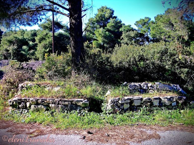 Ελένη Τράνακα: Βολίμες, Ζάκυνθος / Volimes, Zakynthos