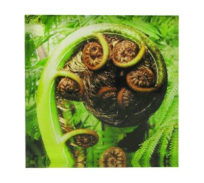 Koru Art Block  Artearoa | Shop New Zealand NZ$ 35.90