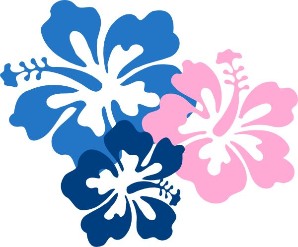 how to draw a hawaiian flower step by step