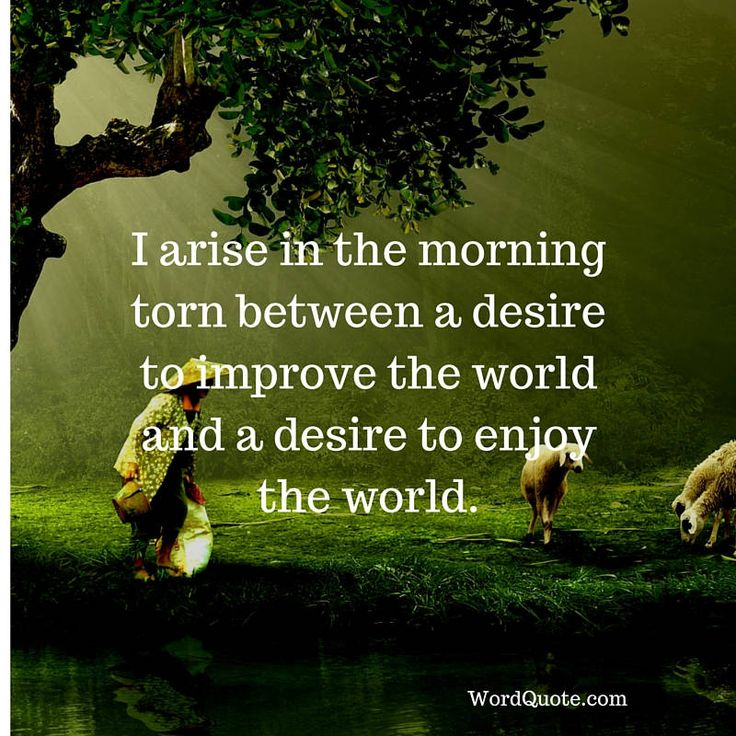 Top 13 Inspirational Quotes 3: 17 Best Motivational Quotes For Kids On Pinterest