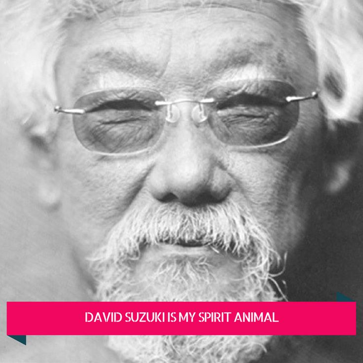 David suzuki the legacy review .png  book literature environment nature review inspiration green lifestyle eco friendly