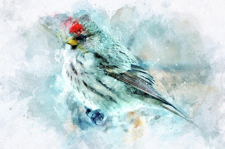 Bird In Watercolor Pyrography by Oksana Ariskina  #OksanaAriskina #HomeDecor #FineArtPrint #BuyArtOnline #PrintsForSale #Bird #Illustration #Paint #Abstract #Watercolor #Tender www.oksana-ariskina.pixels.com @pixels @fineartamerica