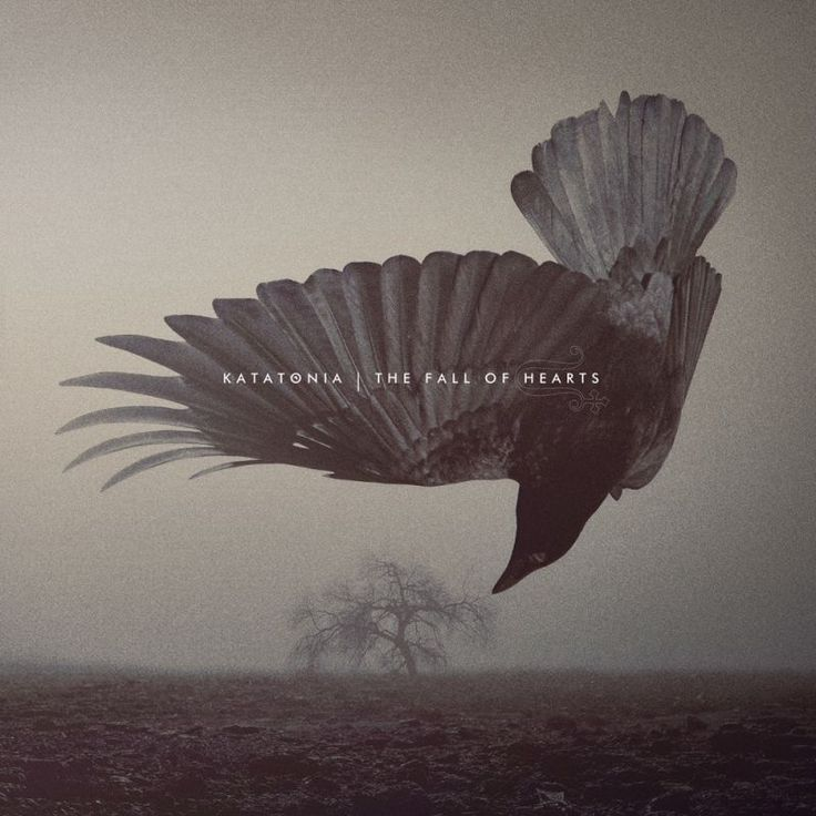 Top 20 Albums of 2016: 16. Katatonia - The Fall of Hearts | Full List: http://www.platendraaier.nl/toplijsten/top-20-albums-van-2016/