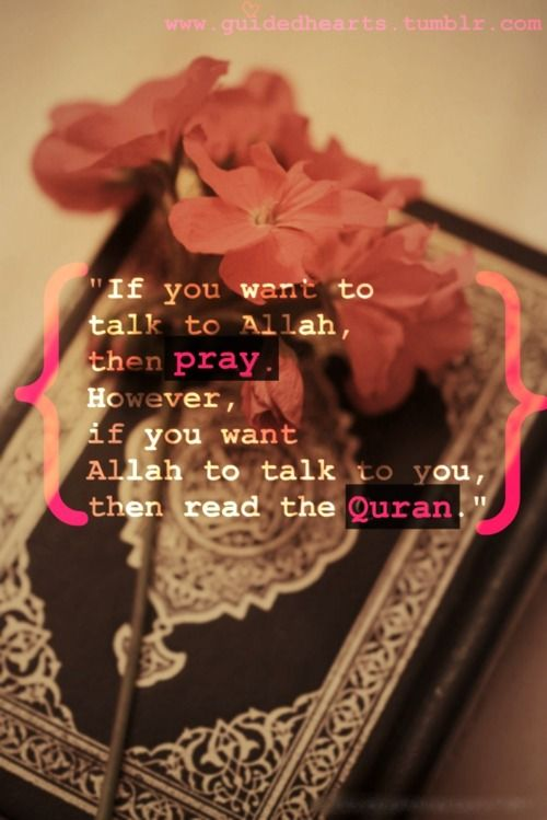 If you want Allah to talk to you...