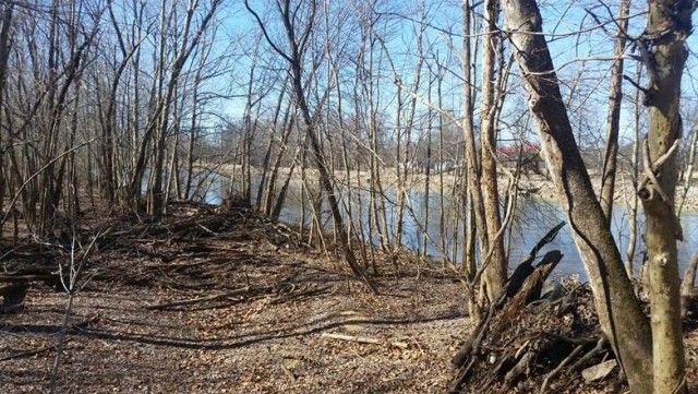 Waterfront lot on lower Current River in southeast Missouri Ozarks-fishing, swimming,camping, picnic area,boating, canoeing and water sports is what you get with this partially treed river lot. There is also more lots for sale if someone wants to expand and as a plus each lot owner has access to a common ground too. A great place for a retreat!! in Doniphan MO