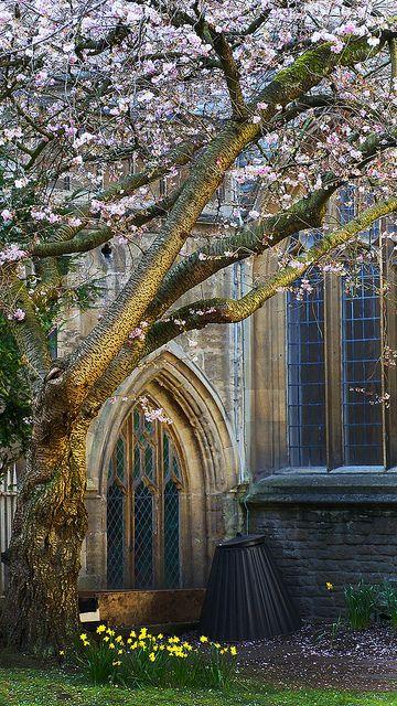 Bristol, England | Flickr - Fotosharing!