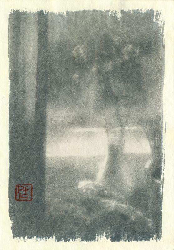 pf, monolens, cyanotype