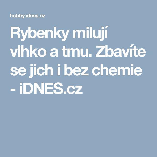 Rybenky milují vlhko a tmu. Zbavíte se jich i bez chemie - iDNES.cz