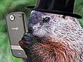 I love groundhog's day...next year I'm taking the kiddos to Pux. PA!!!