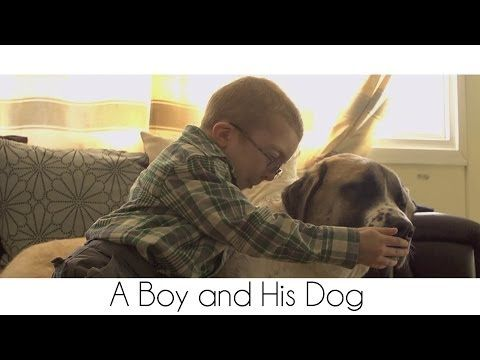 Owen and Haatchi have a Facebook site here . A book about their story is being published today. | This Story Of A Boy And His Dog Will Melt Your Heart