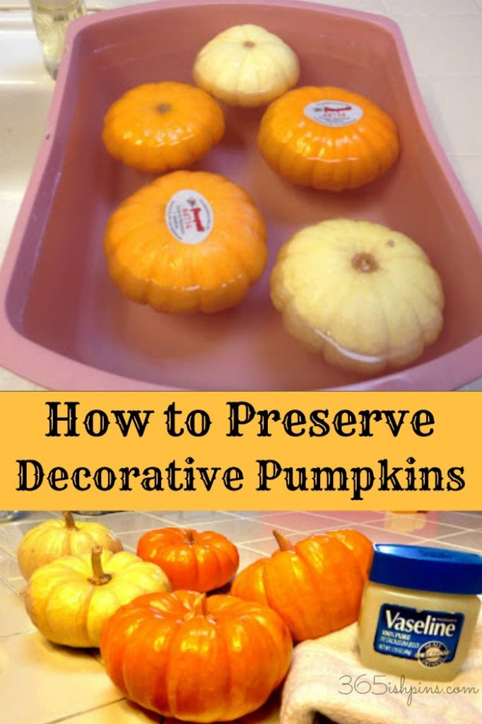 Preserve pumpkins and decorative gourds with a couple easy steps. No more rotting mantel displays!