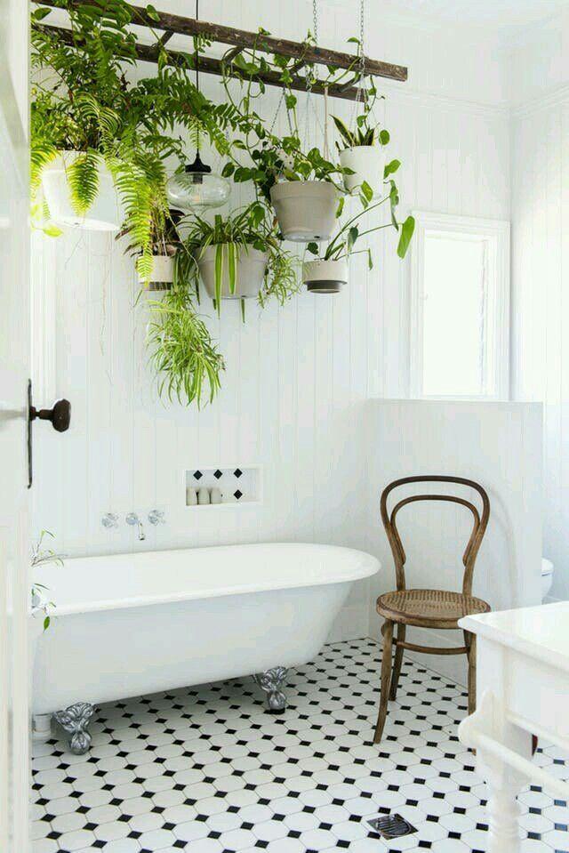 Plants Hanging On Ladder Above Tub Bathroom Indoor Plants Tuscan