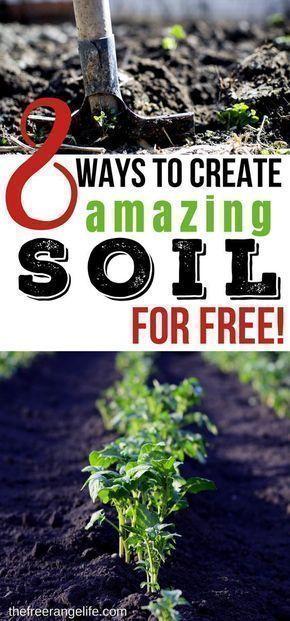 Vegetable Gardening Tips   Posted by: SurvivalofthePrepped.com