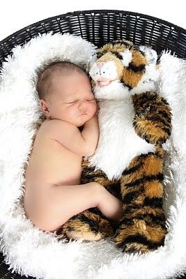 Tigers: August 2011Sleep Newborns, Photos Ideas, Photo Ideas, Cuddling Photos, Newborns Stuffed Animal, Adorable Kids, Animal Photos, Geaux Tigers, Newborns Cuddling