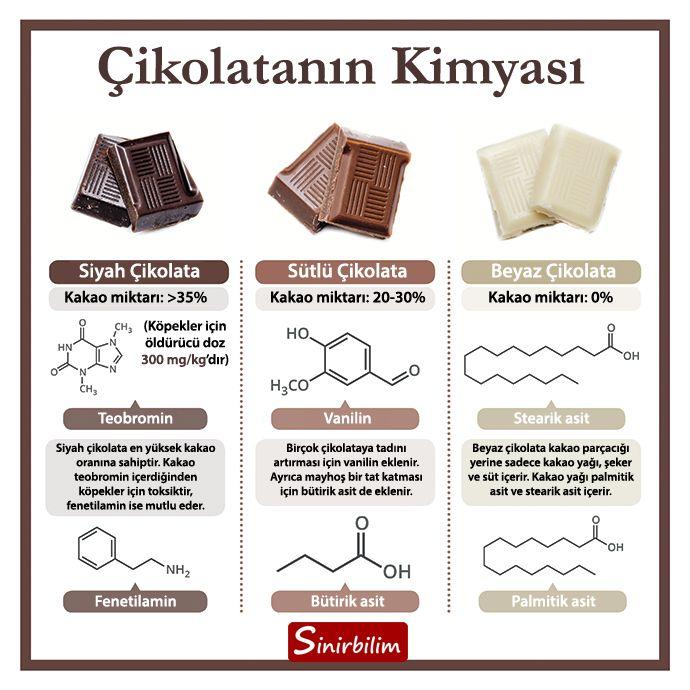 Çikolatayı sevmeyen insan yok gibidir ama aynı zamanda çikolatanın kimyası ile ilgili de çok az şey bilinir. Hangi türünde ne kadar kakao bulunur, hangi maddeler vardır gibi sorular birçok kişinin zihnini kurcalayabilir. Görselde gördüğünüz aslında çikolatanın içeriğinin çok az bir kısmı. Kakao parçacıkları tıpkı kafein gibi zengin bir flavonoid ve alkaloid kaynağıdır. Çikolatanın sağlığa yararlı olmasının başlıca nedenlerinden biri de bu flavonoid kaynağı olan kakaodur.