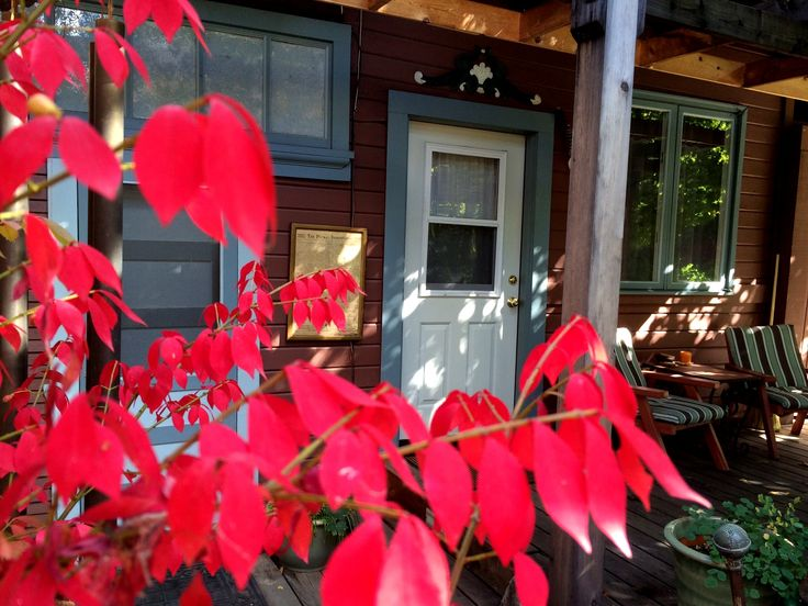 Motel  Cottages. 13 best Favorite Places   Spaces images on Pinterest   Motel  Gem