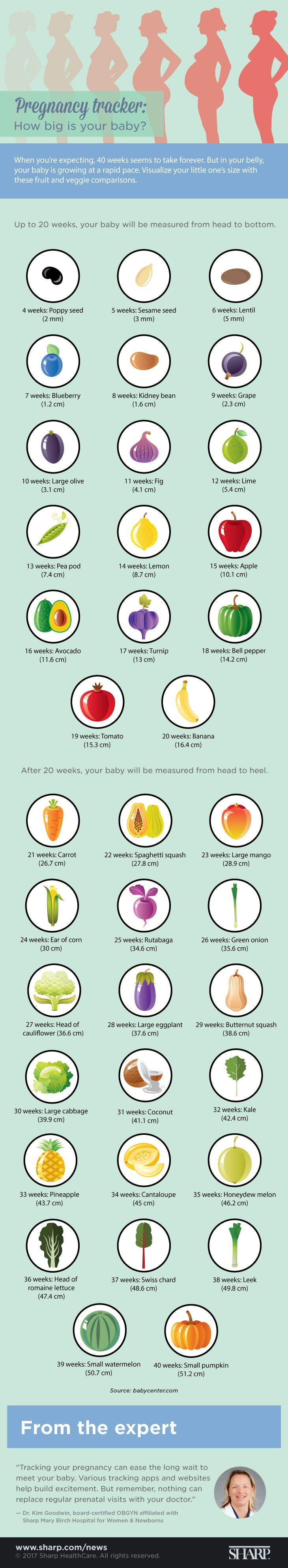 Visualize your little one's size with these fruit and veggie comparisons. #pregnancy