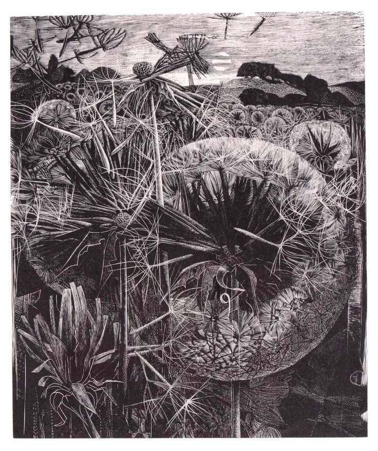 George Tute's 'Dandelion Field' (1964), one of a number of wood engravings that @angielewin has selected for her exhibition in Winchester, 'A Printmaker's Journey'. Other engravings are included by the artists Enid Marx, Gertrude Hermes, Monica Poole, Herry Perry and Jonathan Gibbs alongside a selection of Angie's own prints. Find out more via www.printmakersjourney.info