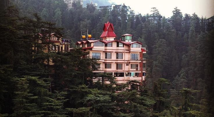 Book rooms at The Bodhi Tree B&B Homestay in Shimla @ Rs 1000