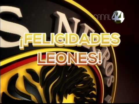 Leones Negros UDG Campeón Liga de Ascenso MX - YouTube