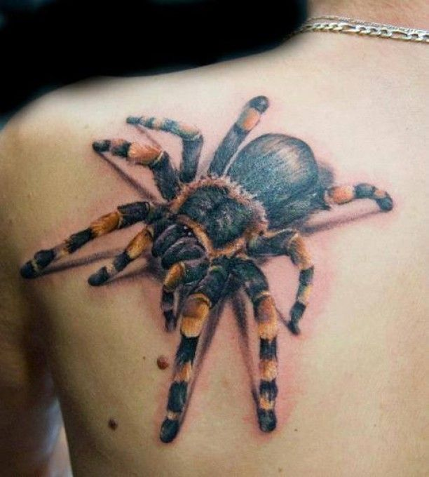 Vogelspinne 3D Schulterblatt Tattoo