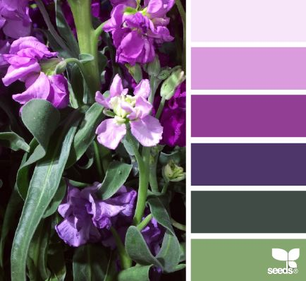 Flora Palette - http://design-seeds.com/index.php/home/entry/flora-palette24